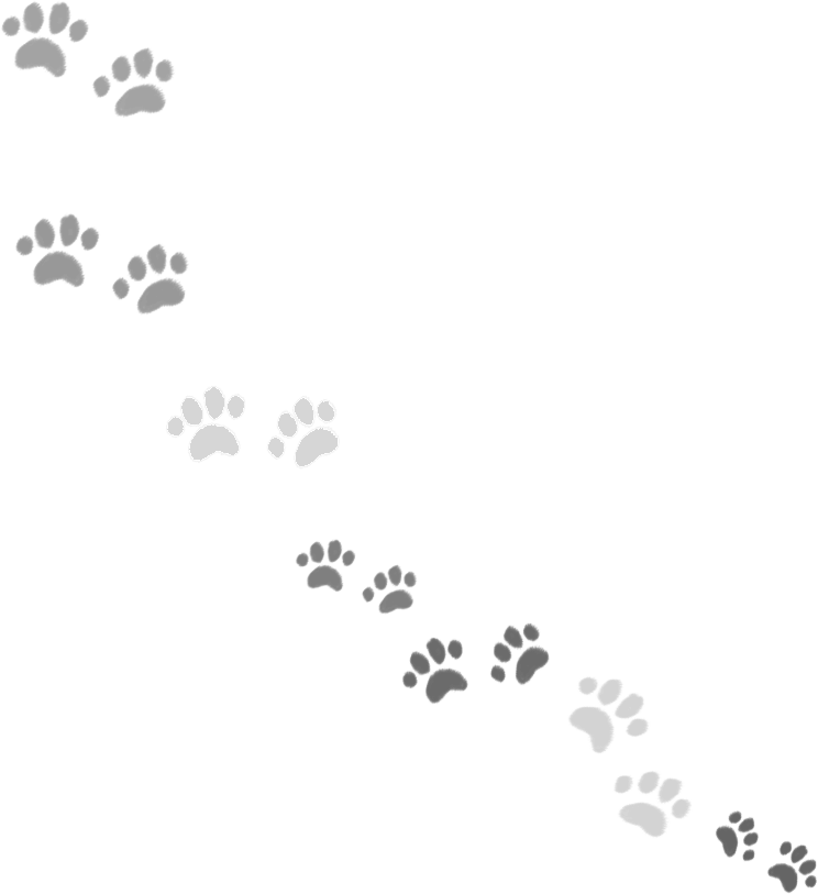 いぬ 足跡02のイラスト かわいいフリー素材が無料のイラストレイン