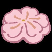 桜の形の和菓子
