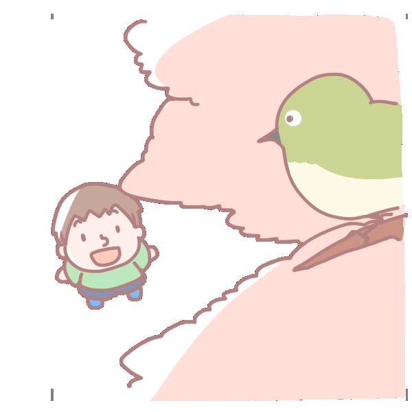 桜の木の上のメジロのイラスト