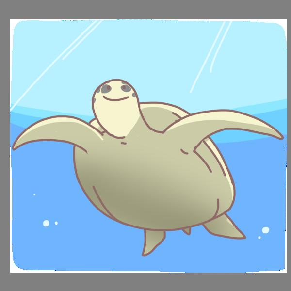 海を泳ぐカメのイラスト