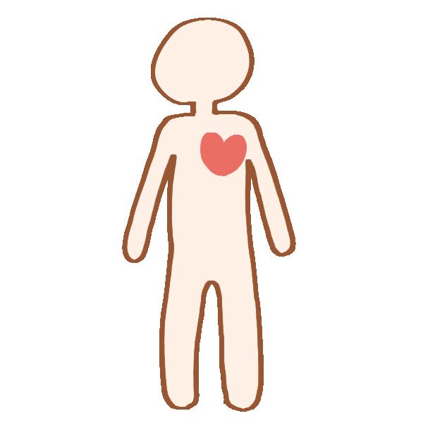 人体と心臓のイラスト