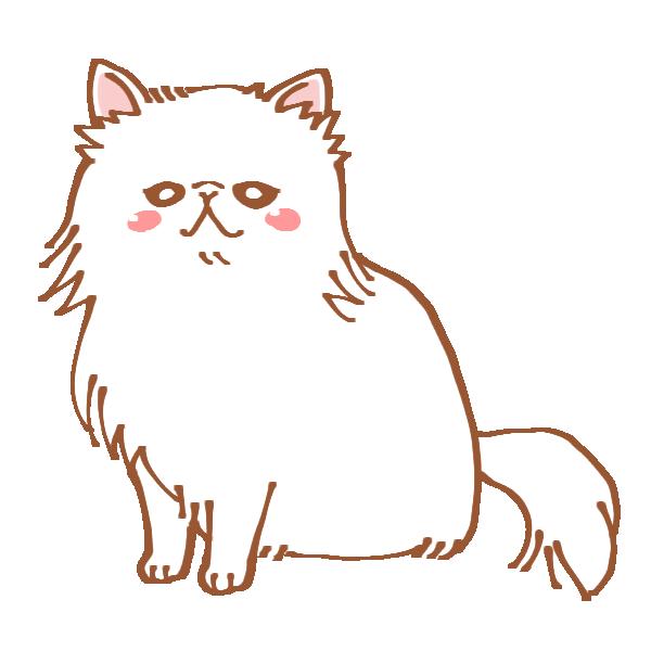 ペルシャ猫のイラスト