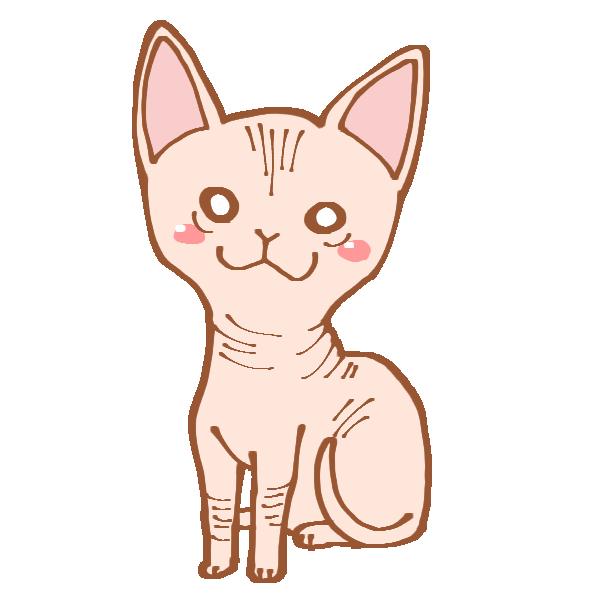 猫のスフィンクスのイラスト