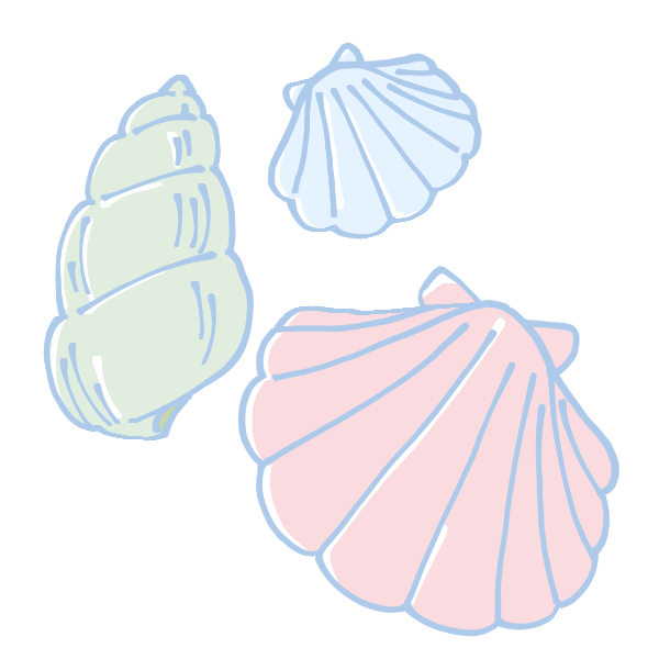 カラフルな貝殻のイラスト