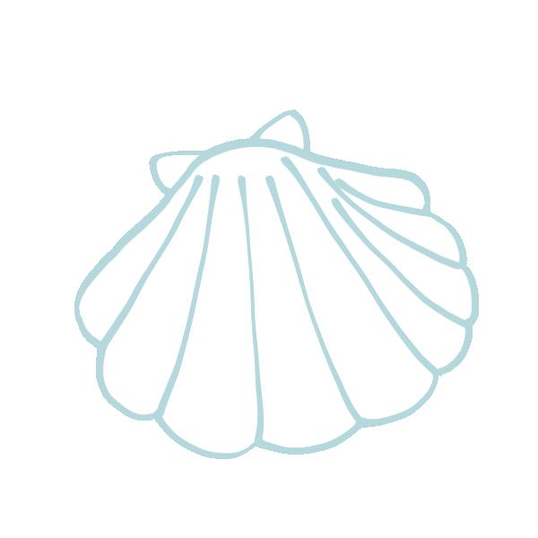 白い2枚貝のイラスト