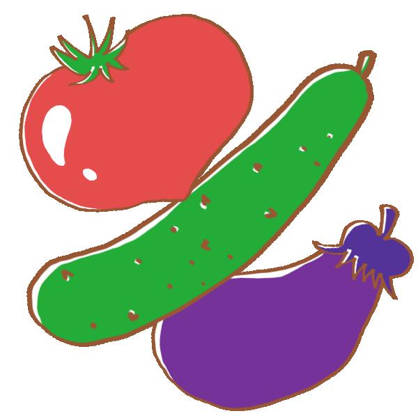 夏の野菜のイラスト