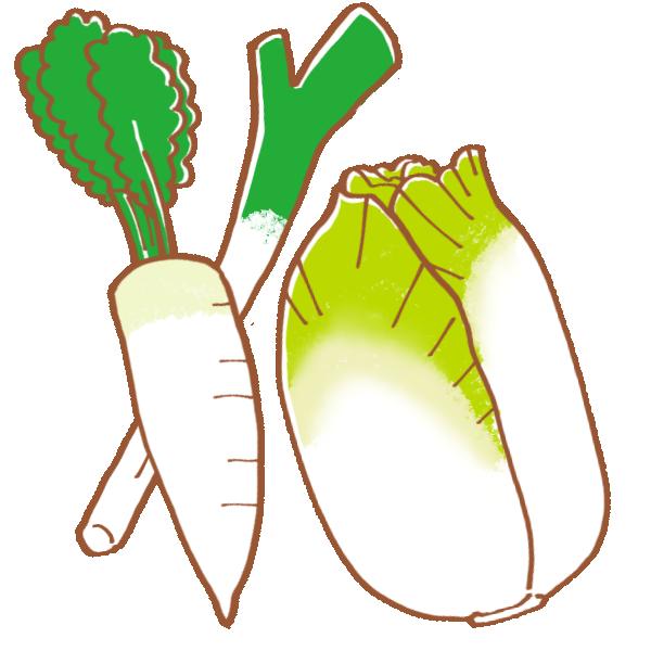 冬の野菜のイラスト