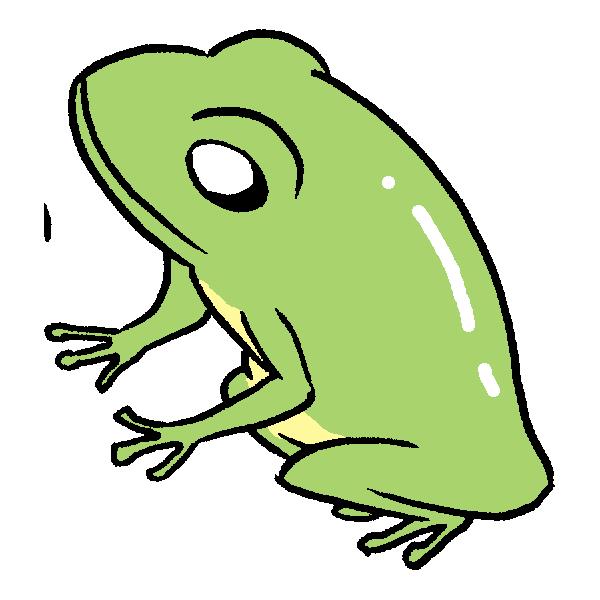 横向きカエルのイラスト
