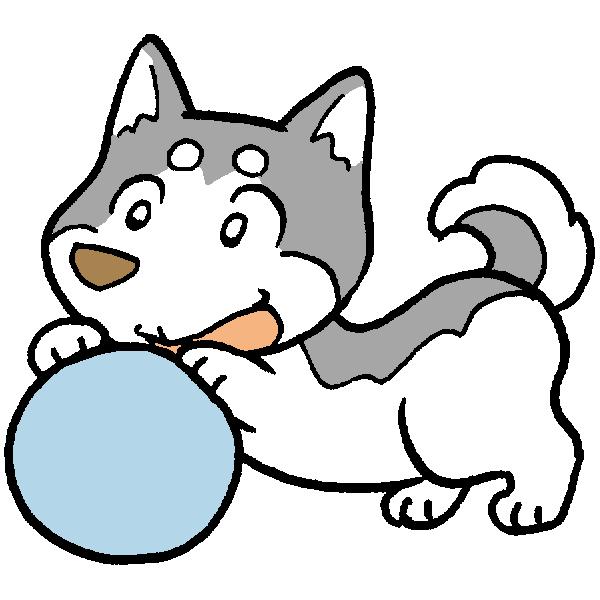 犬とボールのイラスト