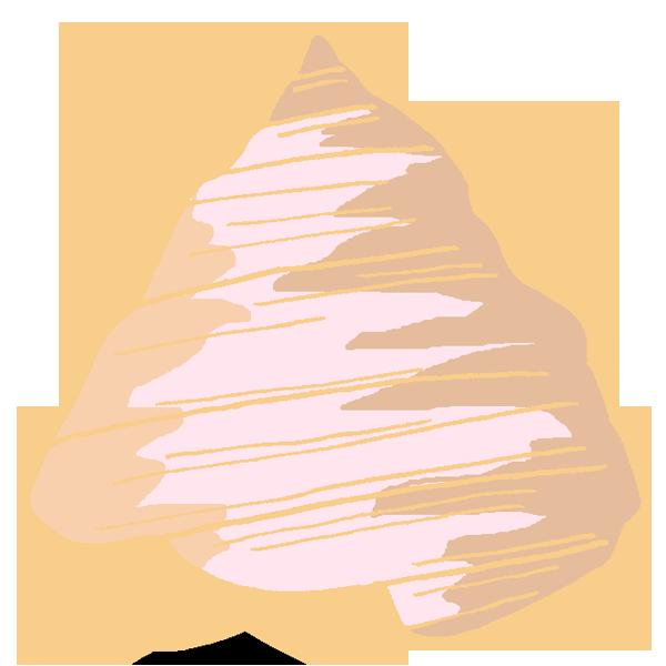 貝殻その2のイラスト
