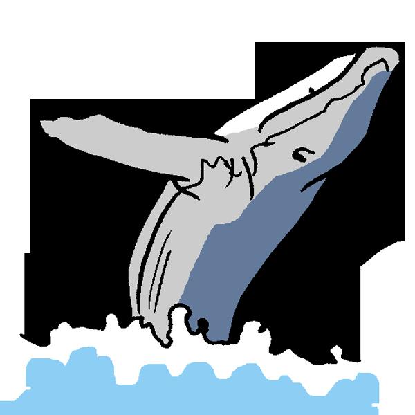 海をはねるクジラのイラスト