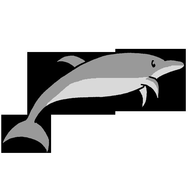 イルカ2のイラスト