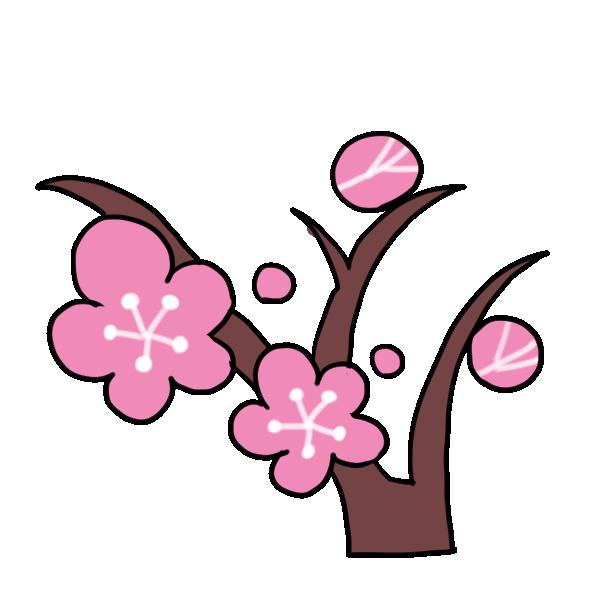 梅の木のイラスト