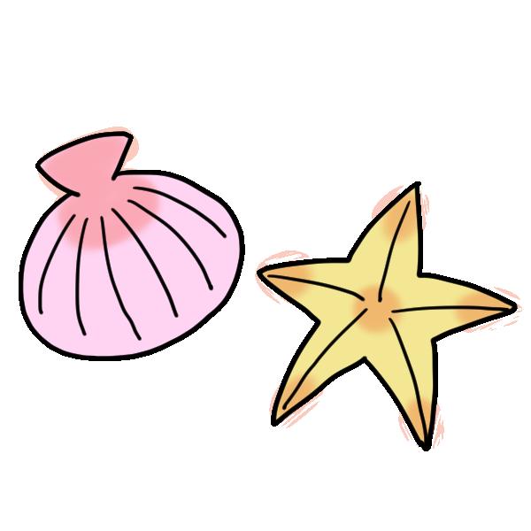 ピンクの貝と黄色いヒトデのイラスト