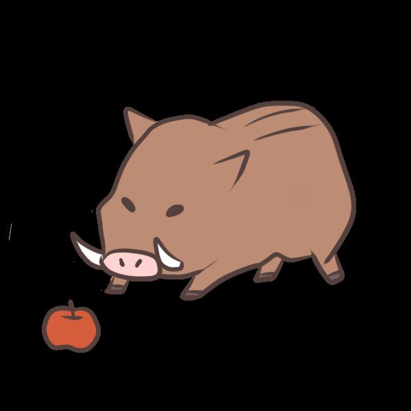 リンゴが食べたいイノシシのイラスト