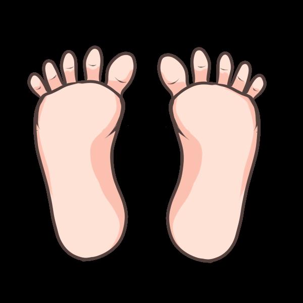 足のイラスト