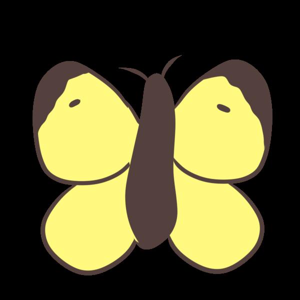 モンキチョウのイラスト