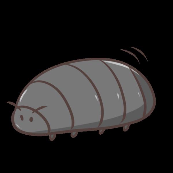 ダンゴ虫のイラスト
