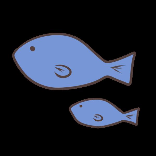 魚の親子のイラスト