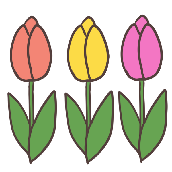 チューリップのつぼみのイラスト
