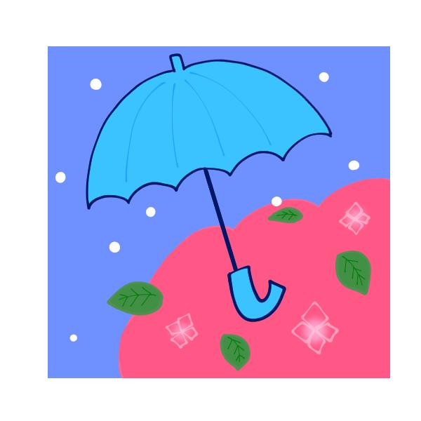 傘とアジサイのイラスト