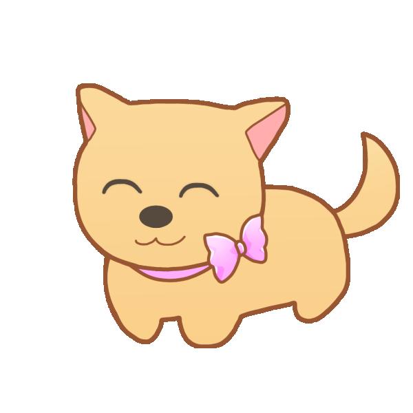 リボンの首輪の犬(笑顔)のイラスト
