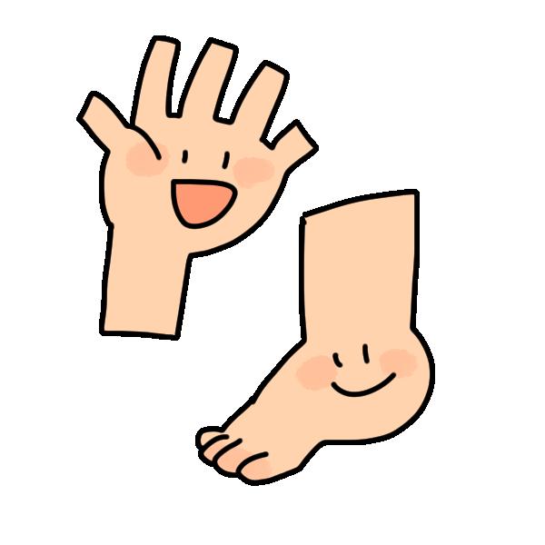 手と足のイラスト