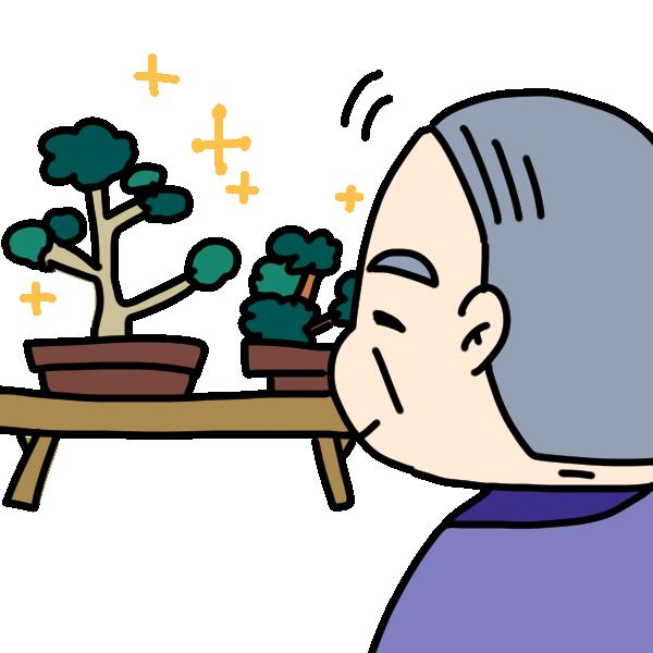 盆栽が趣味の人のイラスト