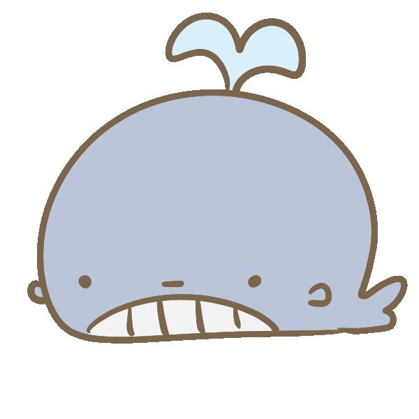 かわいいクジラのイラスト