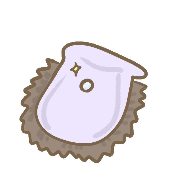 あこや貝のイラスト