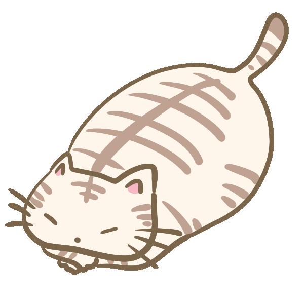 デブなトラ猫のイラスト