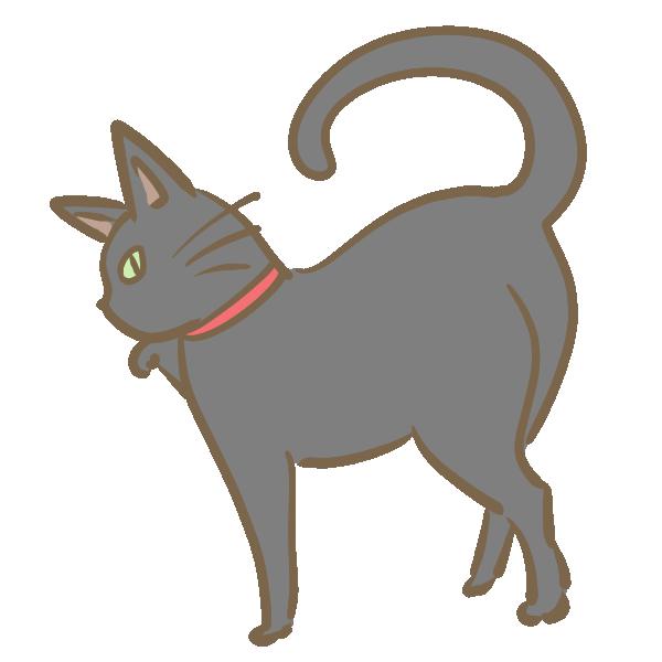 ツンとした黒猫のイラスト