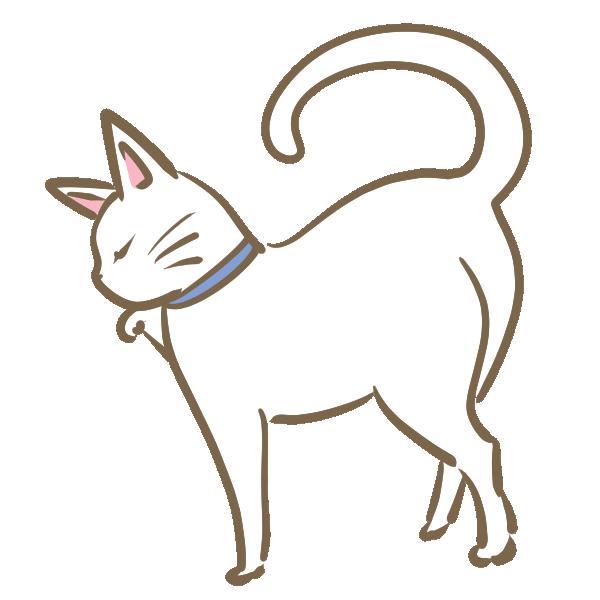 ツンとした白猫のイラスト