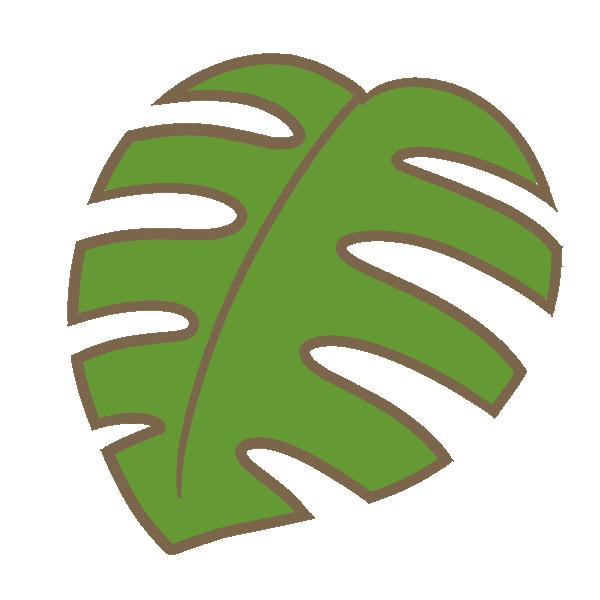 モンステラの葉のイラスト