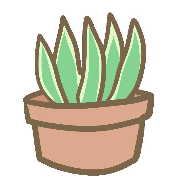 多肉植物(2)のイラスト