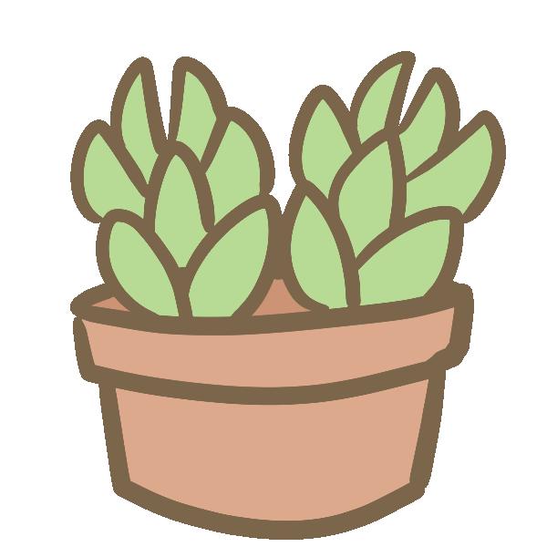 多肉植物(4)のイラスト