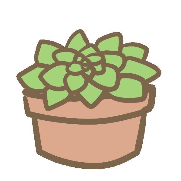 多肉植物(5)のイラスト
