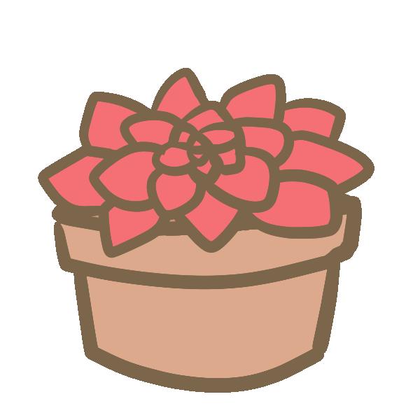 多肉植物(6)のイラスト