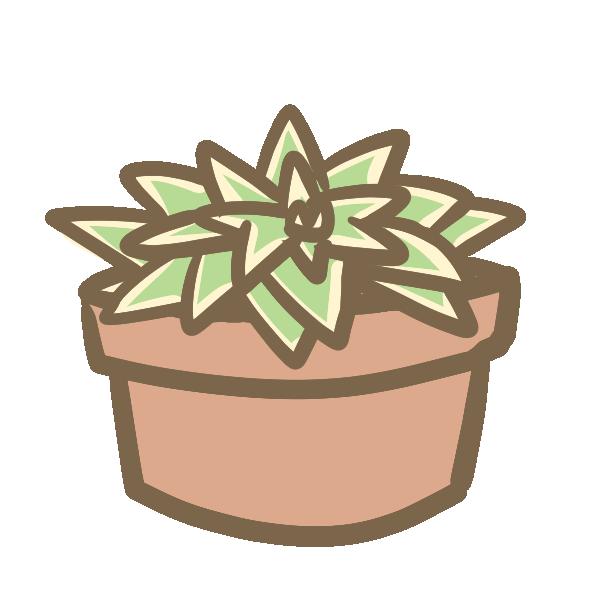 多肉植物(9)のイラスト