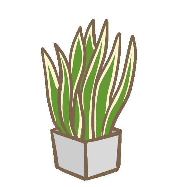 観葉植物(3)のイラスト