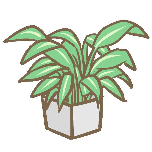 観葉植物(5)のイラスト