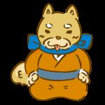 着物を着た柴犬2