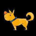 雑種犬-01