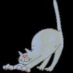 背伸びする灰色猫