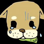 悲しんでいる犬
