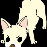 足跡を探索中の犬