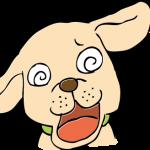 目が回った犬