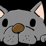 噛み付いている犬