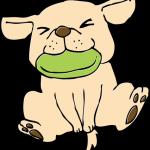 フリスビーキャッチをしている犬