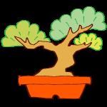 幹が太い盆栽